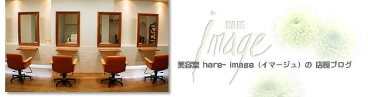 中央林間 美容院 hair image 「美容室 イマージュ」 の店長ブログ